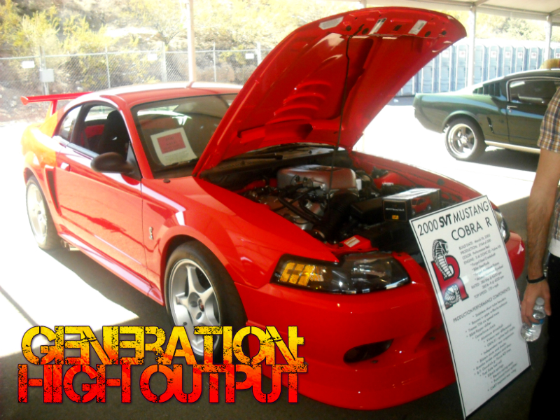 2000 ford svt mustang cobra r generation high output. Black Bedroom Furniture Sets. Home Design Ideas